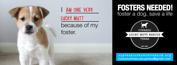 foster-fb-cover